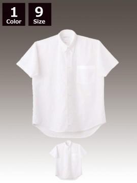 CK-2522 シャツ(半袖)