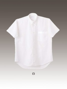 CK-2522 シャツ(半袖) カラー一覧