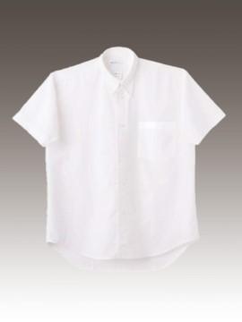 CK-2522 シャツ(半袖) 拡大画像