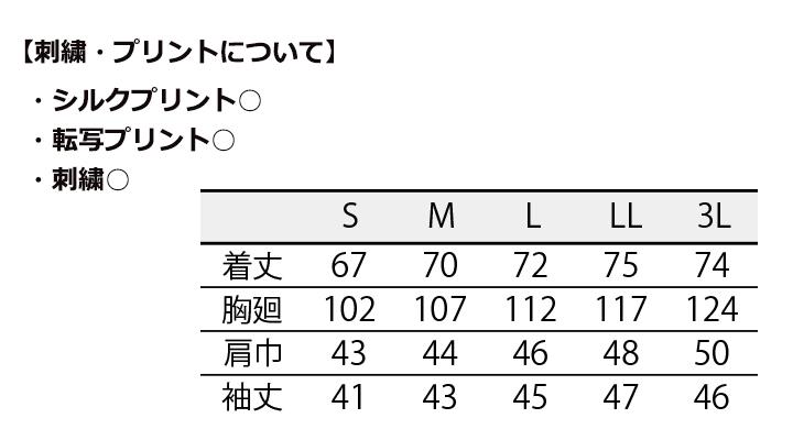 6691_size.jpg