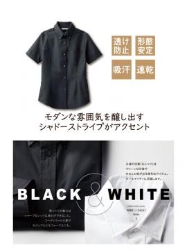 ARB-BC6921 ボタンダウンシャツ(レディス・半袖) 特長