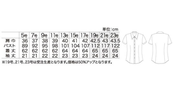 AR1651_size.jpg