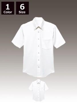 BS-23308 ニットボタンダウンシャツ トップス