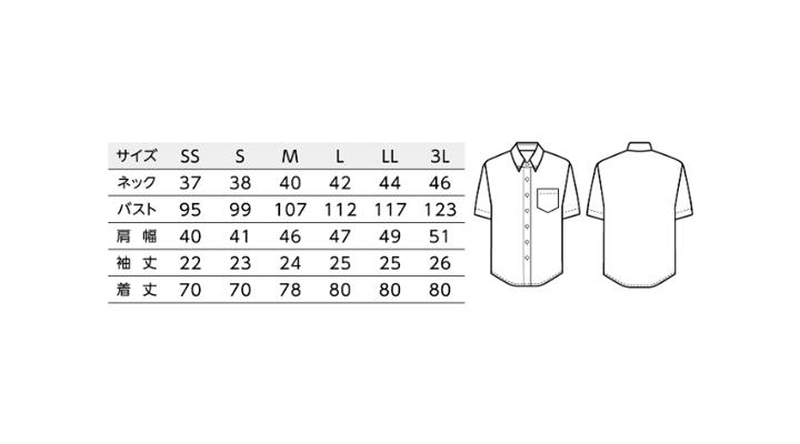 BS-33308 ボタンダウンシャツ トップス サイズ表