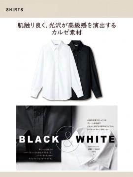 ARB-EP8059 ボタンダウンシャツ(男女兼用・長袖) カルゼ素材