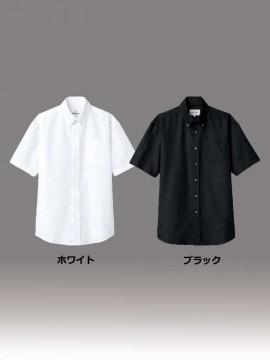ARB-EP8060 ボタンダウンシャツ(男女兼用・半袖) カラー一覧