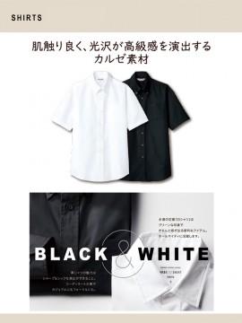 ARB-EP8060 ボタンダウンシャツ(男女兼用・半袖) カルゼ素材