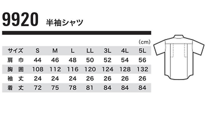 9920-size.jpg