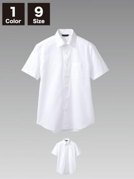 CK-BS25822 シャツ(男女兼用・半袖)