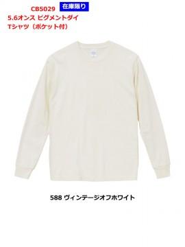 5.6oz ピグメントダイ Tシャツ(ポケット付き)拡大