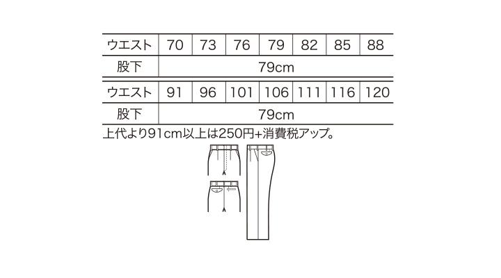 8401_size.jpg