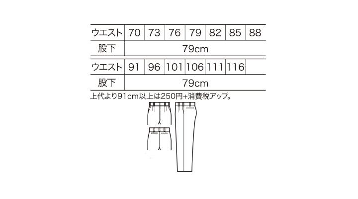 12001_size.jpg
