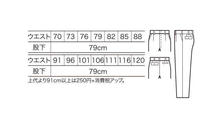 31099_size.jpg