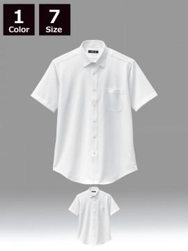 BS-23116 ニットシャツ 商品一覧 白