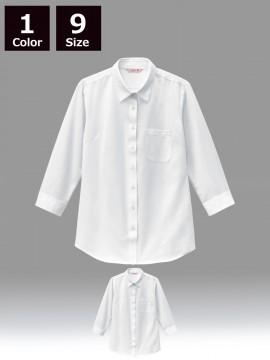 BS-24244 ニットシャツ 商品一覧 白