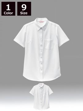 BS-23243 ニットシャツ 商品一覧 白